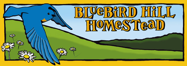 Bluebird hill homestead banner