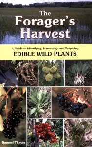 forager's harvest