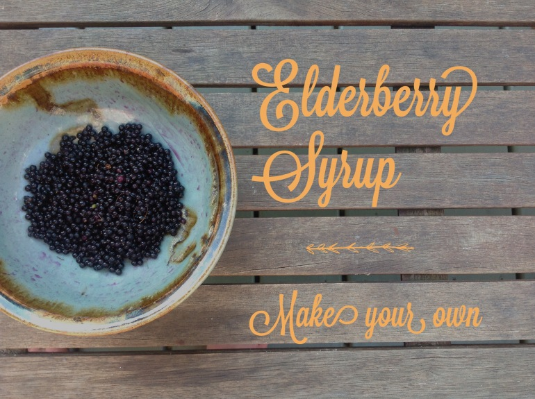 elderberry make your own