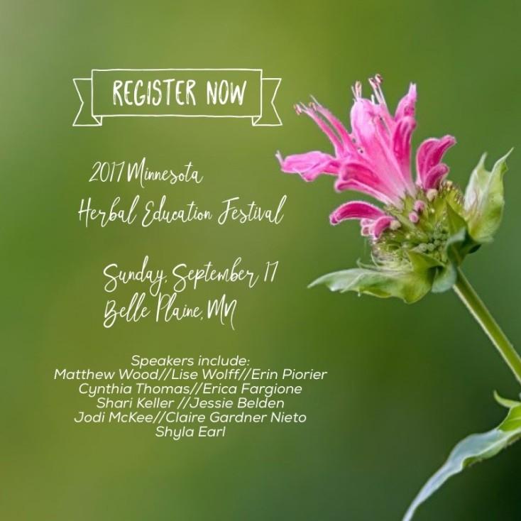 2017 herbal festival flyer