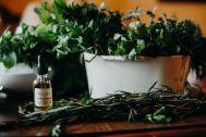 betsy herbs